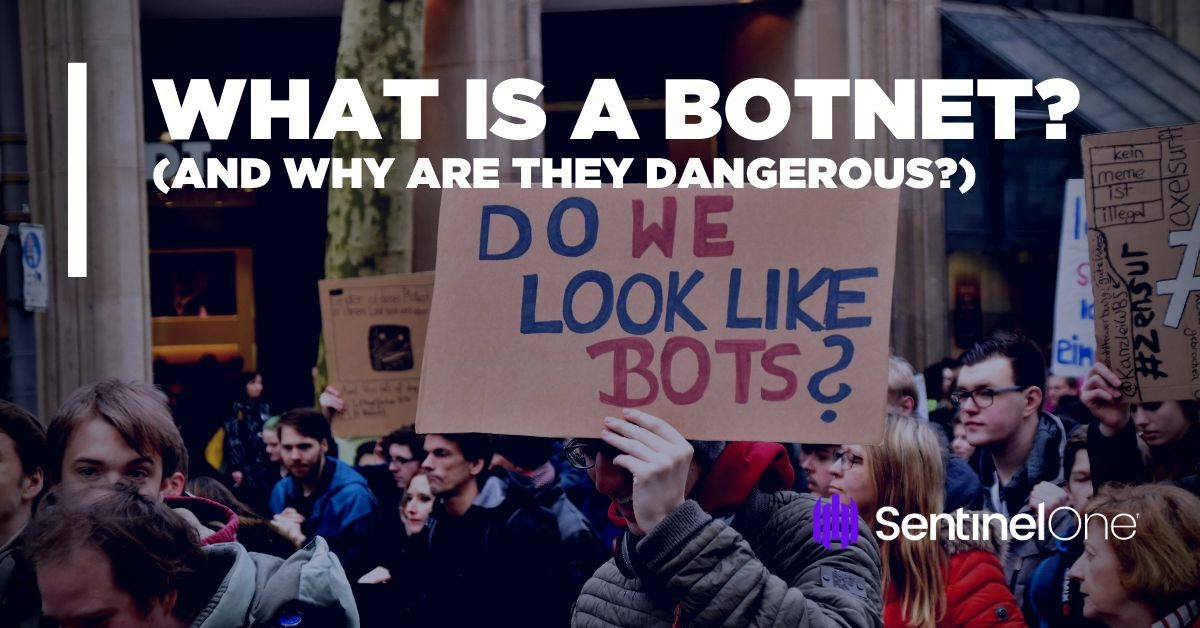 image of what is a botnet